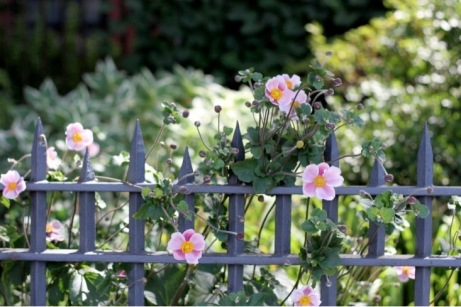 flowers metal garden