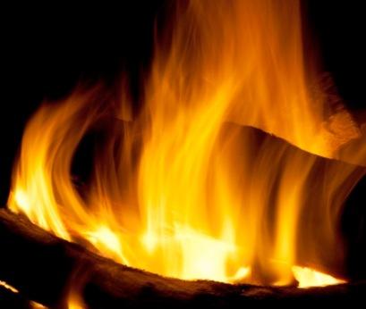 fire wood 2