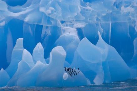 iceberg Lanting